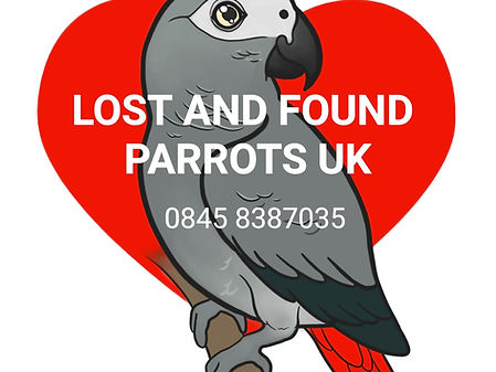 Parrot Lost Found Sighted or Stolen UK