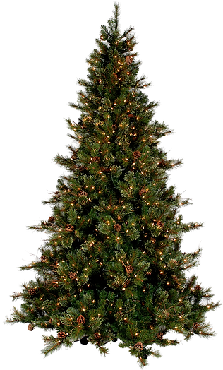 Christmas-Tree-PNG-Picture.png