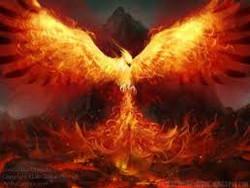 Phoenix Feu