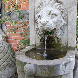 Wandbrunnen.mp4
