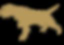 KG LOGO-GOLD NO TXT.png