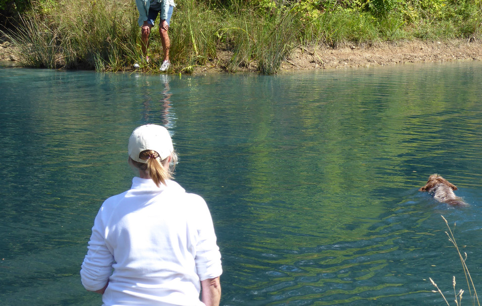 Learning to cros open water