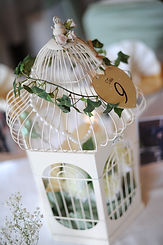 Bird cage wedding