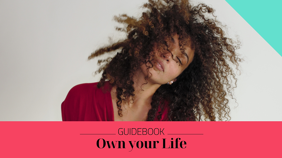 Own your Life Guidebook