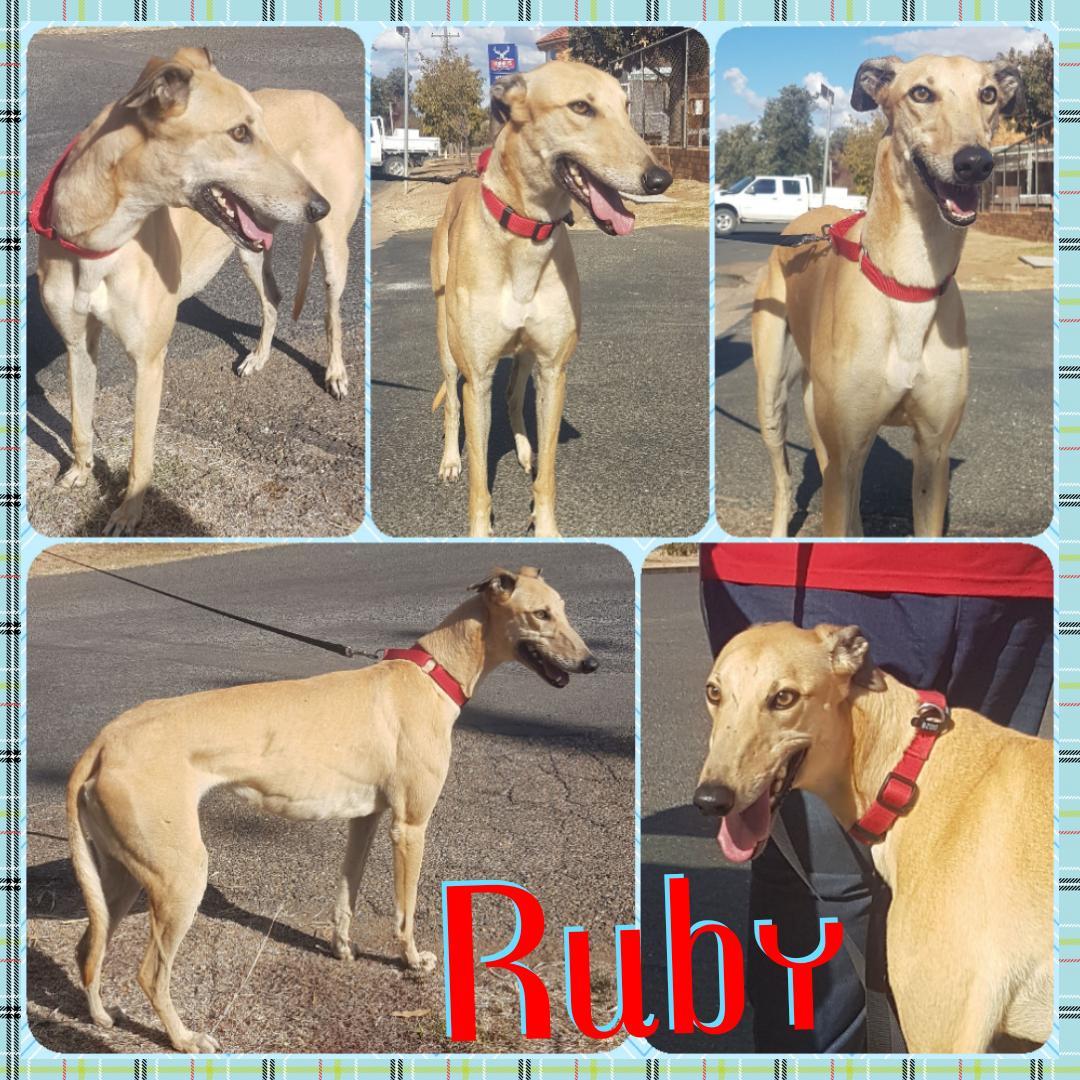 Ruby (Superstar Zoe)