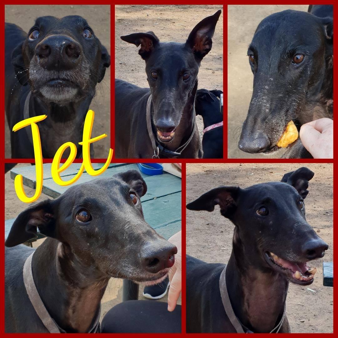 Jet (Zipping Jet)