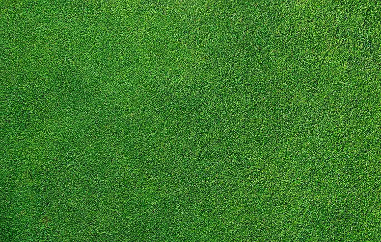 Turfix-homepage-grass-image-hero.jpg