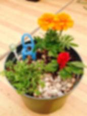 mini garden.jpg