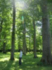 florent louvard la santé simplement naturopathe fontenay le comte vendée l'orbrie