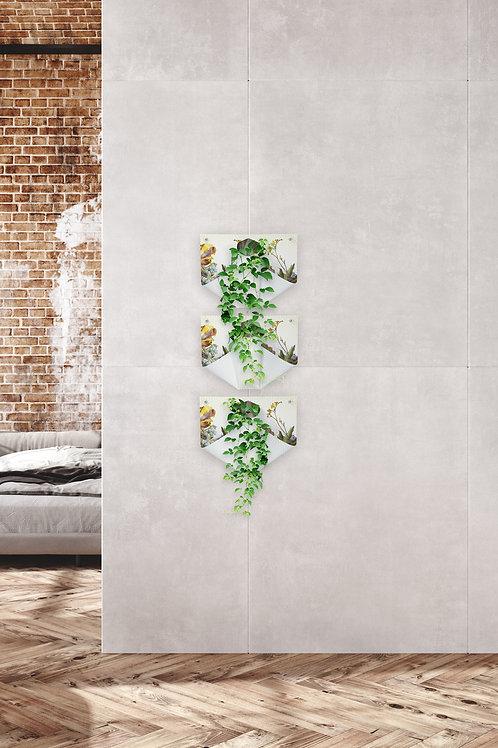 Wall vases | Wand vazen
