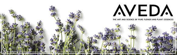 Aveda+banner.jpg
