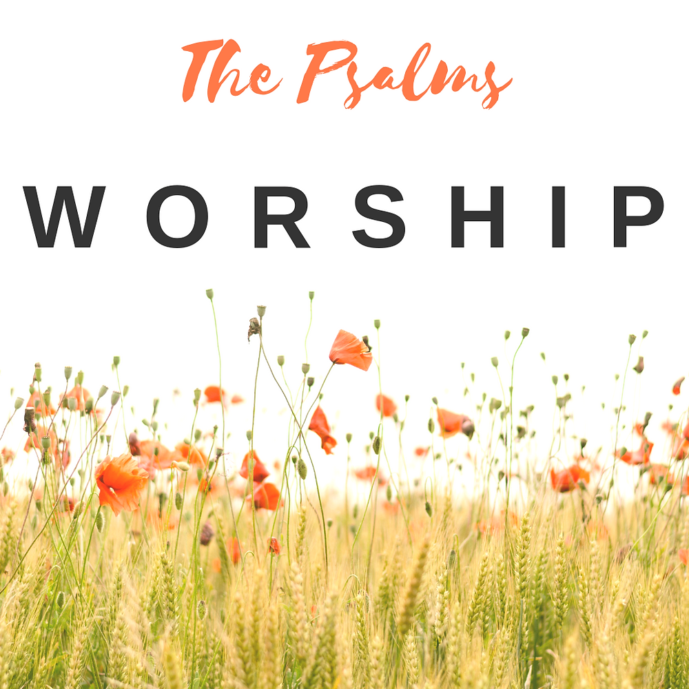 Field of flowers with the title, The Psalms: Worship