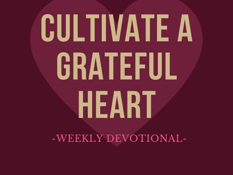 Cultivate a Grateful Heart
