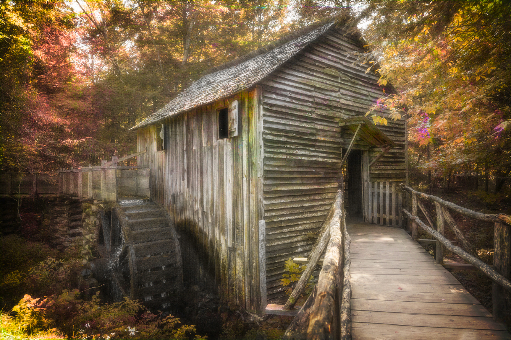 4204 Smokies Old Mill Cades Cove 8 COLOR
