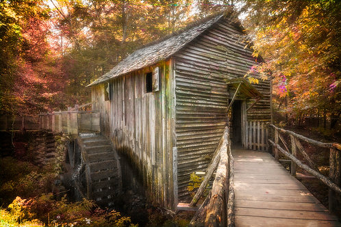4204 Smokies Old Mill Cades Cove 8 COLOR 2