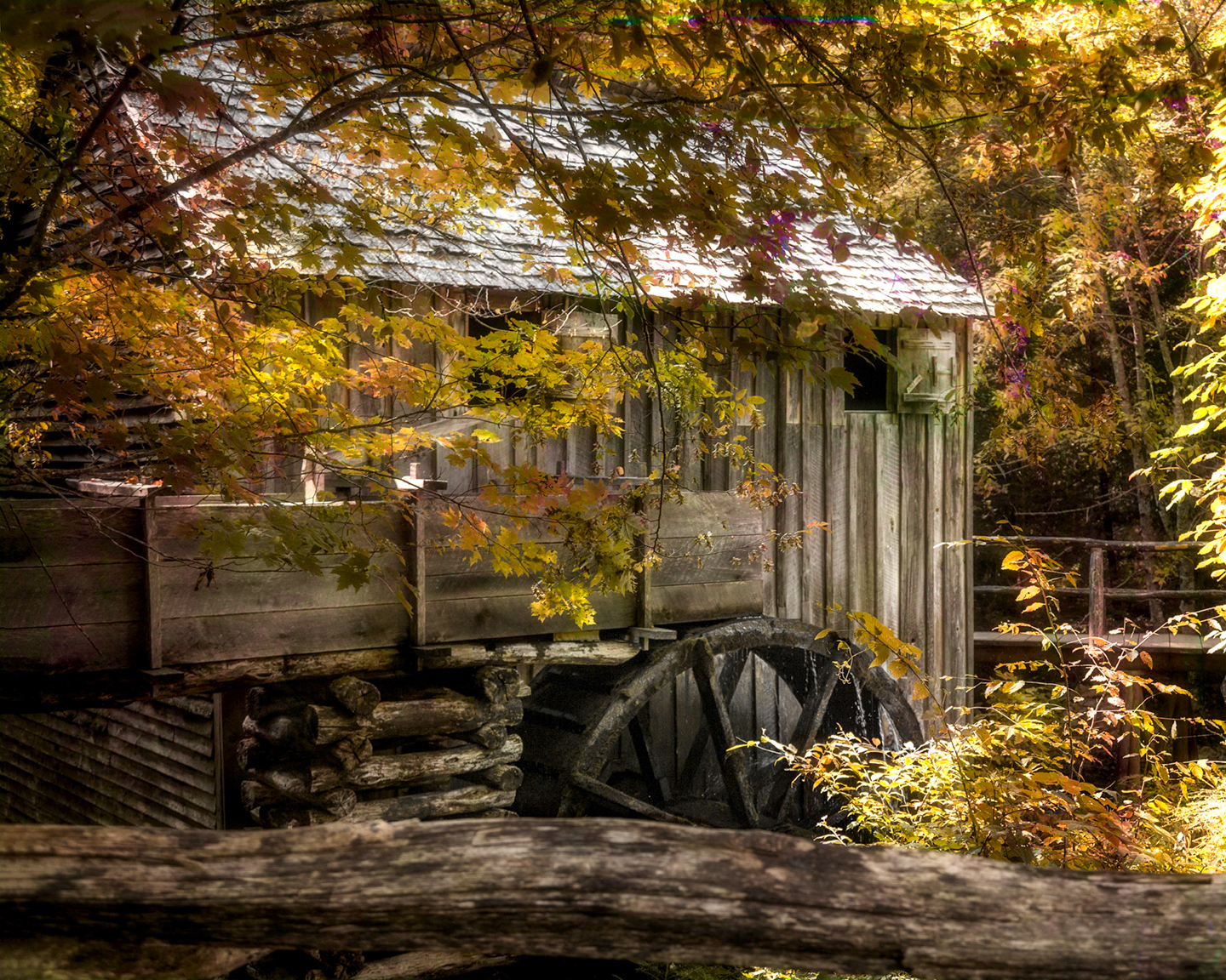 4204 Smokies Old Mill Cades Cove 5 Color