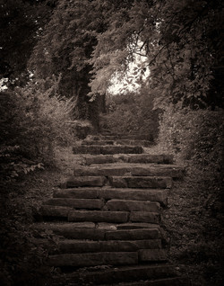 Fort Negley Stairway