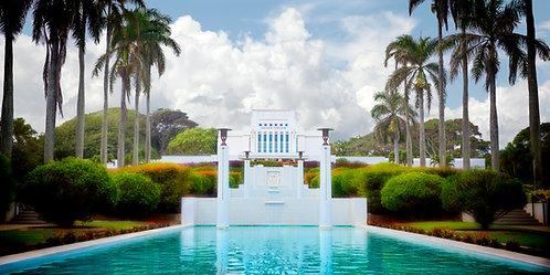 Hawaiian Temple-6116 Alt Color