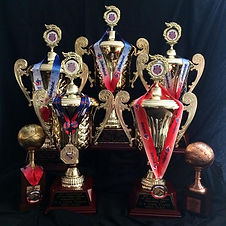 volleyball trophies.jpg