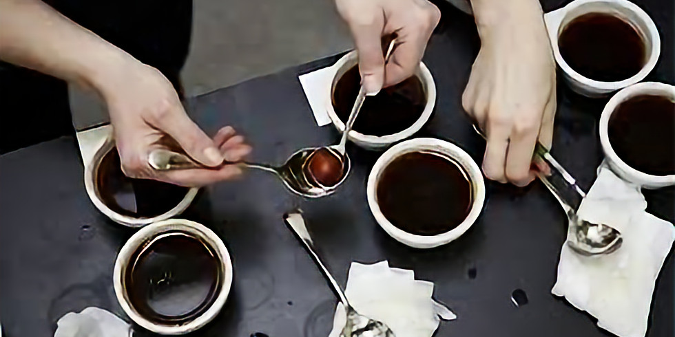 Kávový cupping s pražírnou 5 Elephant!