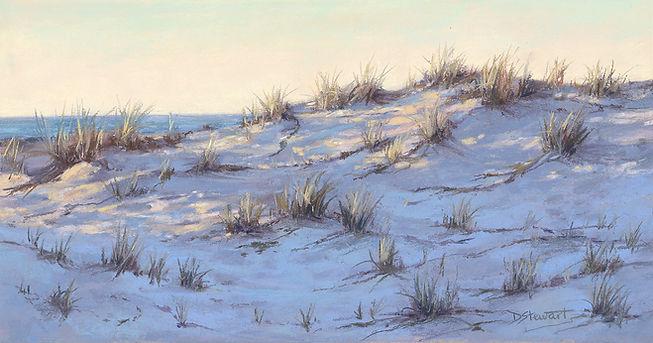 11390 Desley Stewart Sand Dune_FF_web.jp