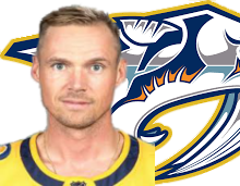 NSH-RINNE.png