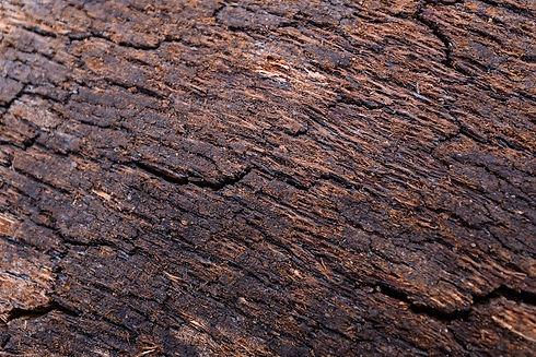 Raw-Material-4.jpg