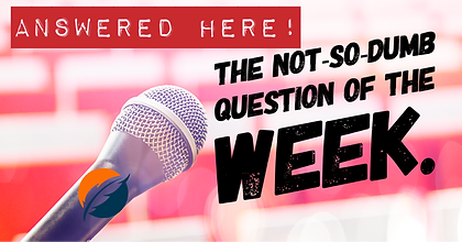 Not So Dumb Question of the Week_Cover.P