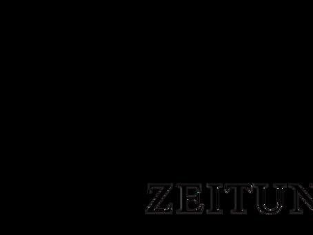 Frankfurter Allgemeine Zeitung interviews deevio founders