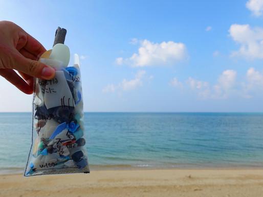 沖縄・本島での現地調査