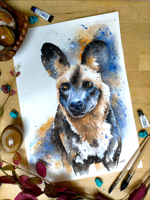 Ayo The African Wild Dog