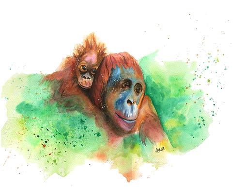 Wasiya & Junada the Bornean Orangutans