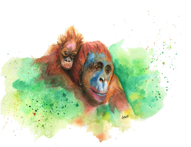 Wasiya and Junada the Orangutans