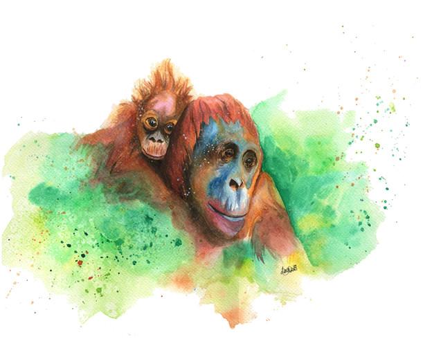 Wasiya and Junada the Orangutans