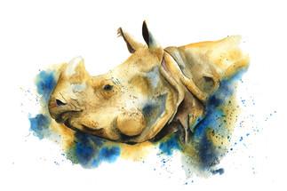Ratna the Rhino