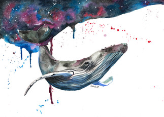 Grace the Whale