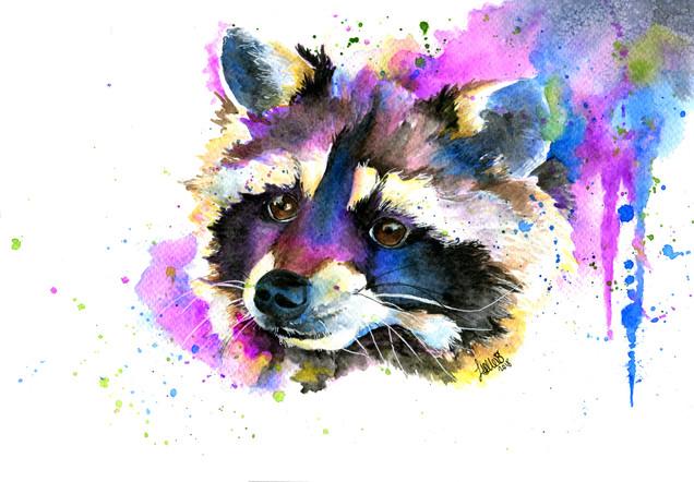RaccoonSebastian.jpg