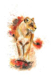 Zuri the Lion