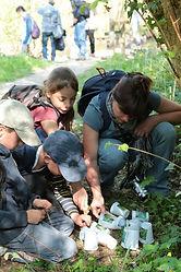 Rallye-Nature-Epreuve-Chaine-alimentaire