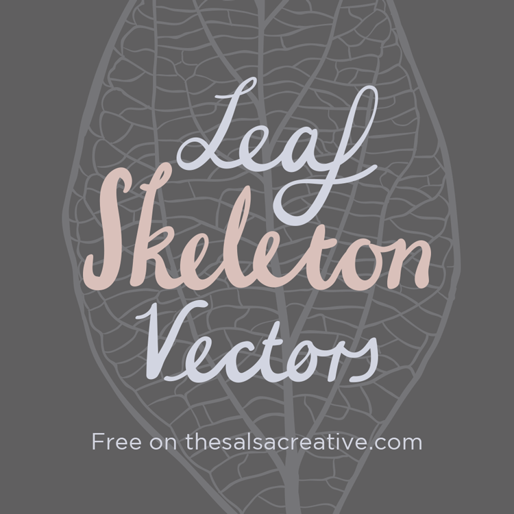 Freebie: Leaf Skeleton Vectors