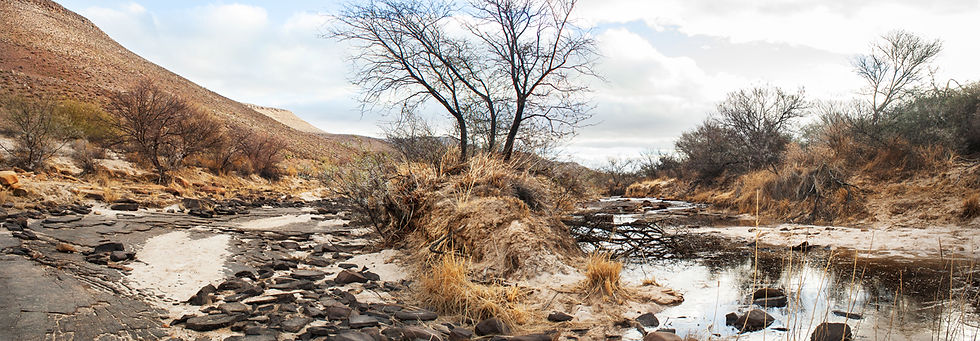 As the rains come, the dry riverbeds slowly fill up with water... Some faster than others. Citrusdal, South Africa