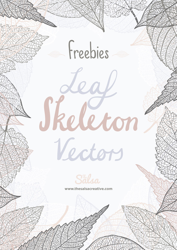 Freebie: Hand Drawn Leaf Skeleton Vectors
