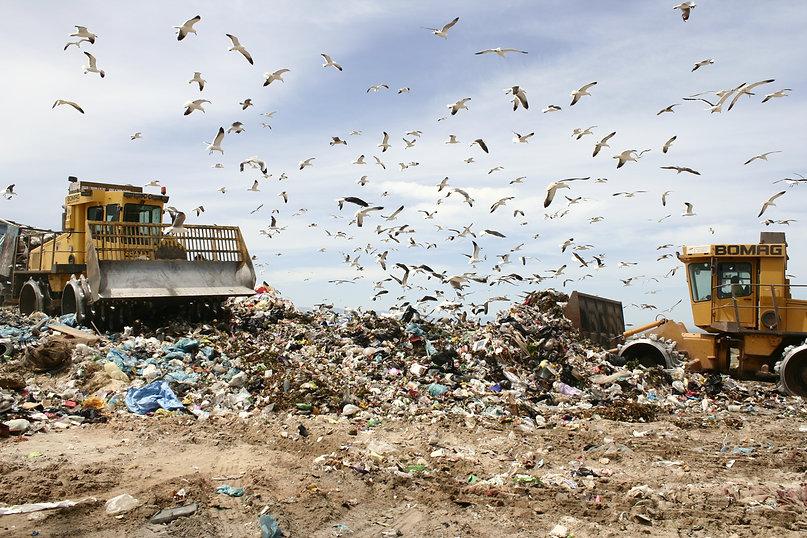 Landfill/dump in False Bay Cape Town