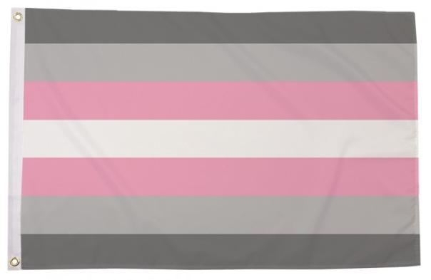 Demigirl Pride Flag