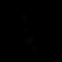 logo phz-1.png