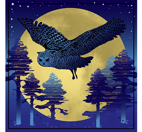 HI-RES All Blue yellowMoonOwl42x42 copy.
