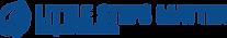 logo-lsm-blue.png