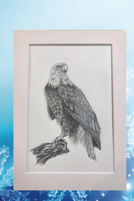 Original printed artwork - Eagle