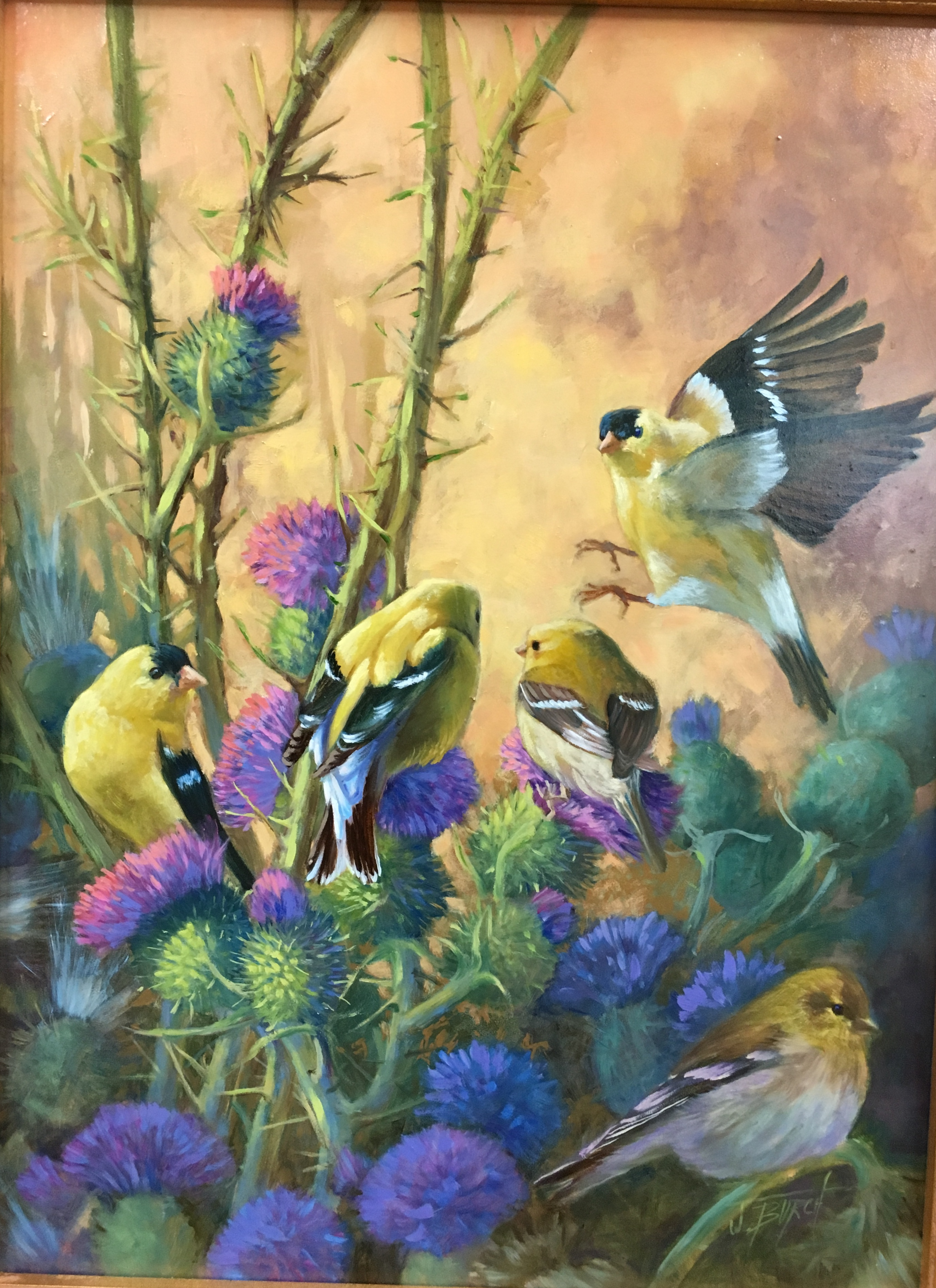 2018-Thisles & Goldfinches 12X16 oil on