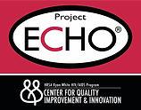 Project_Echo.jpg